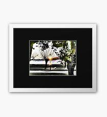 surrealistic arboreal morning Framed Print