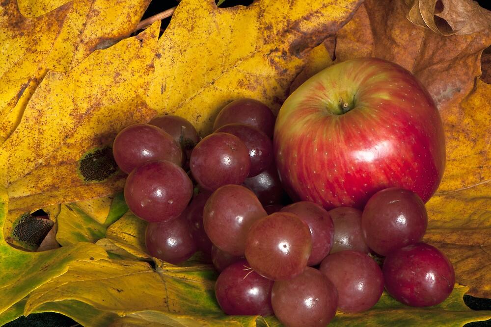 Autumn's Bounty by TeresaB