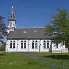 Church in the Bluebonnets by danalynn