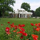 Monticello - Jefferson's home in Virginia by danalynn