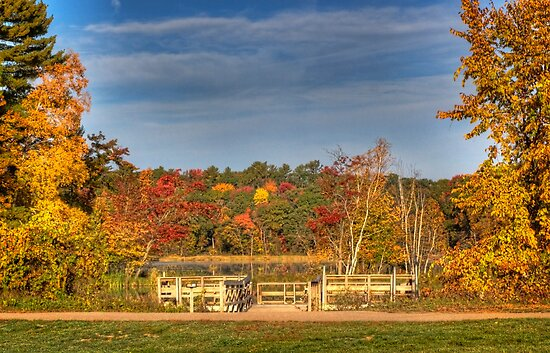 A Fishing Dock With Colors by Thomas Young