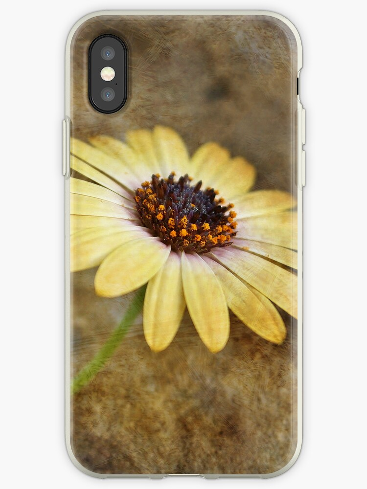 Resting...   iPhone / iPod Case by Astrid Ewing Photography