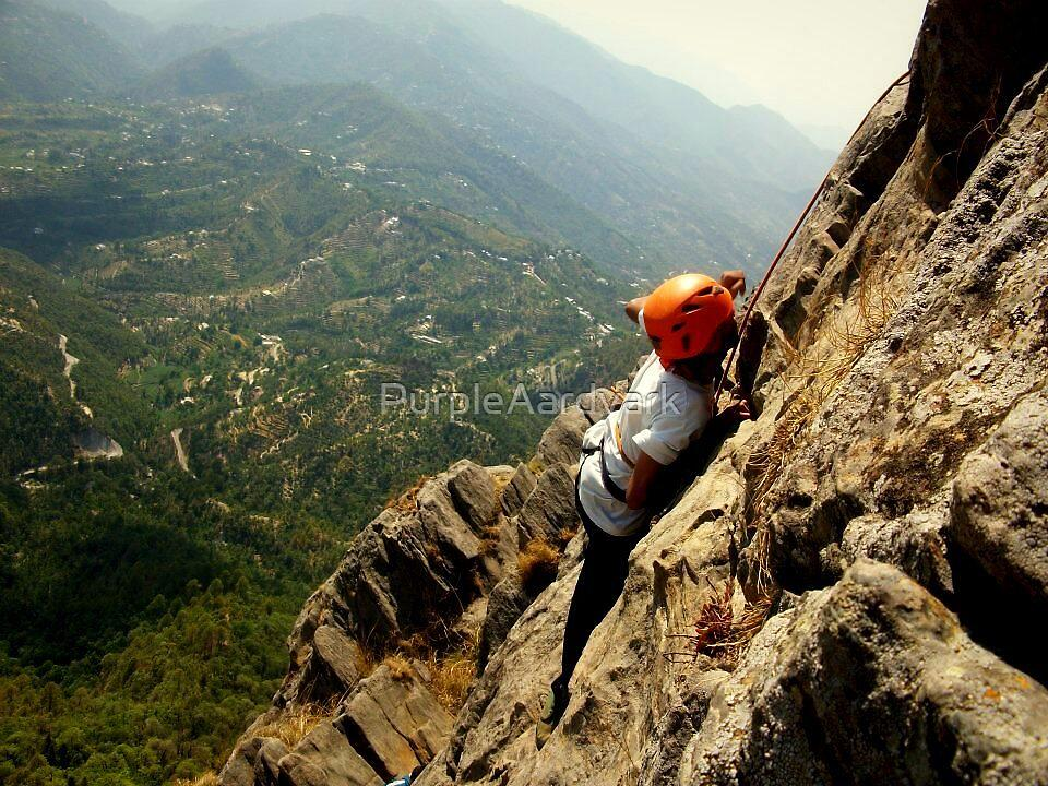 Rockclimbing in the Himalayas by PurpleAardvark