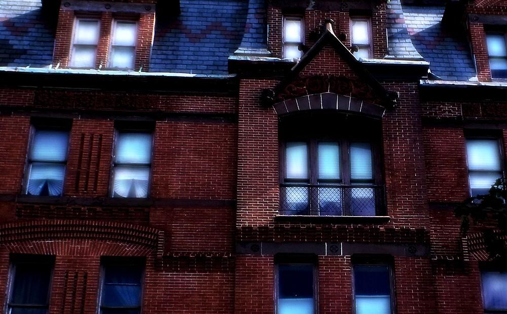 Poe's Windows by Robert Zunikoff