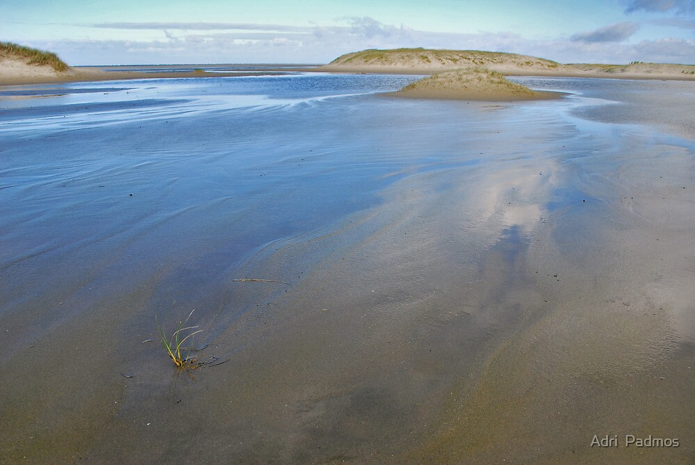 North Sea Beach 4 by Adri  Padmos