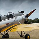 Vintage Warbird - VH-RPT - Ryan PT-22 Recruit by palmerphoto