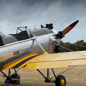 Vintage Warbird - VH-RPT - Ryan PT-22 Recruit by palmerphoto