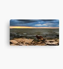 Turn Your Back To The Wind Canvas Print