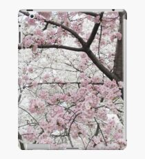 Cherry Blossoms 10 iPad Case/Skin