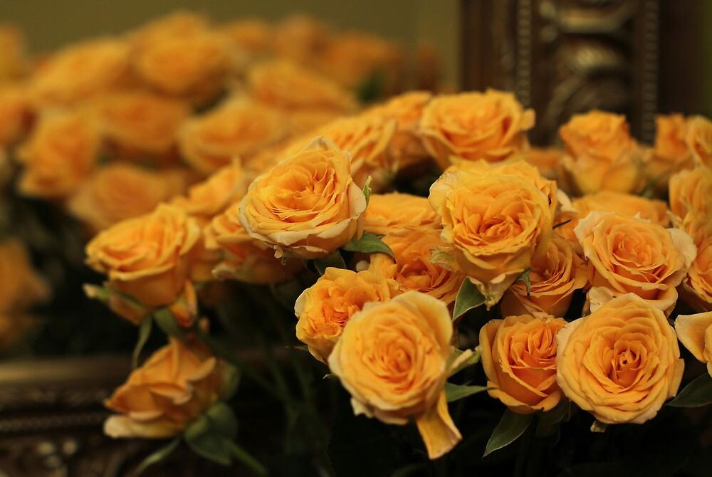 Reflected Roses by Lynn Gedeon