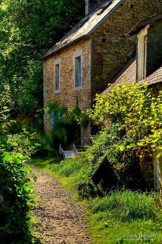 House, Bois d'Amour  2012 by Frank Bibbins