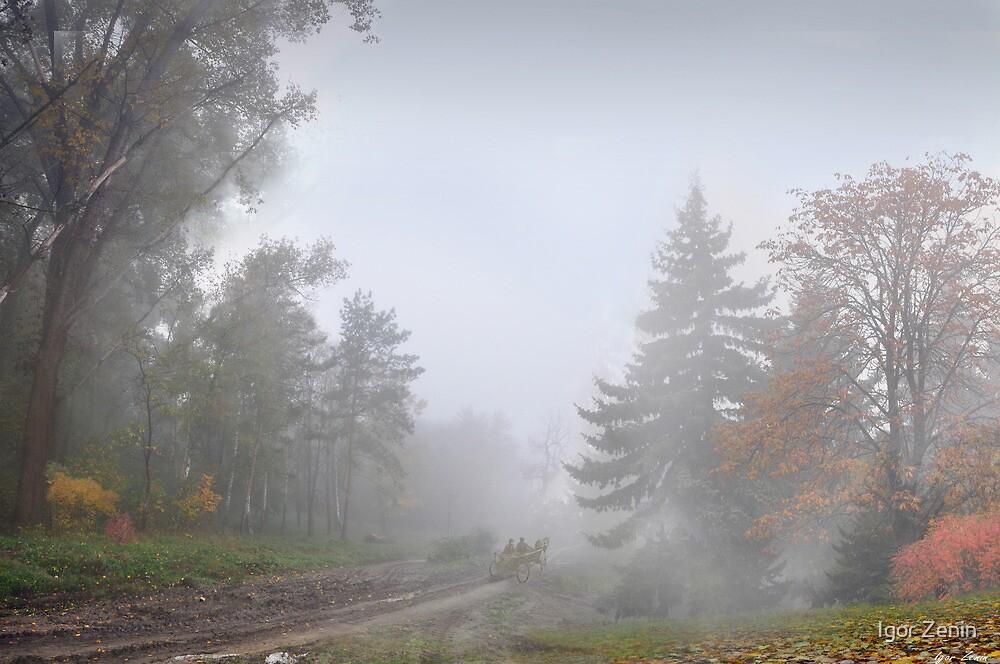 Wood Road by Igor Zenin