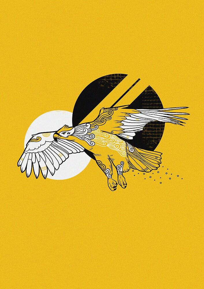 Hawk by Randyotter