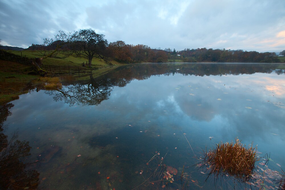 Loughrigg Tarn by Nick Atkin