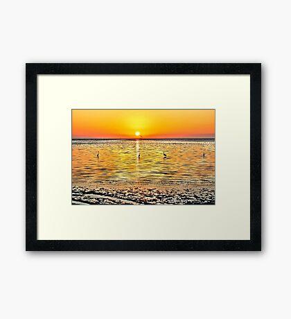 Herons at Sunrise (HDR) Framed Print