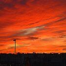 Bangor Skyline At Sunset by Fara