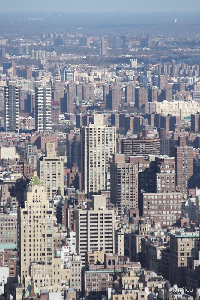 new york skyline by kimiloo
