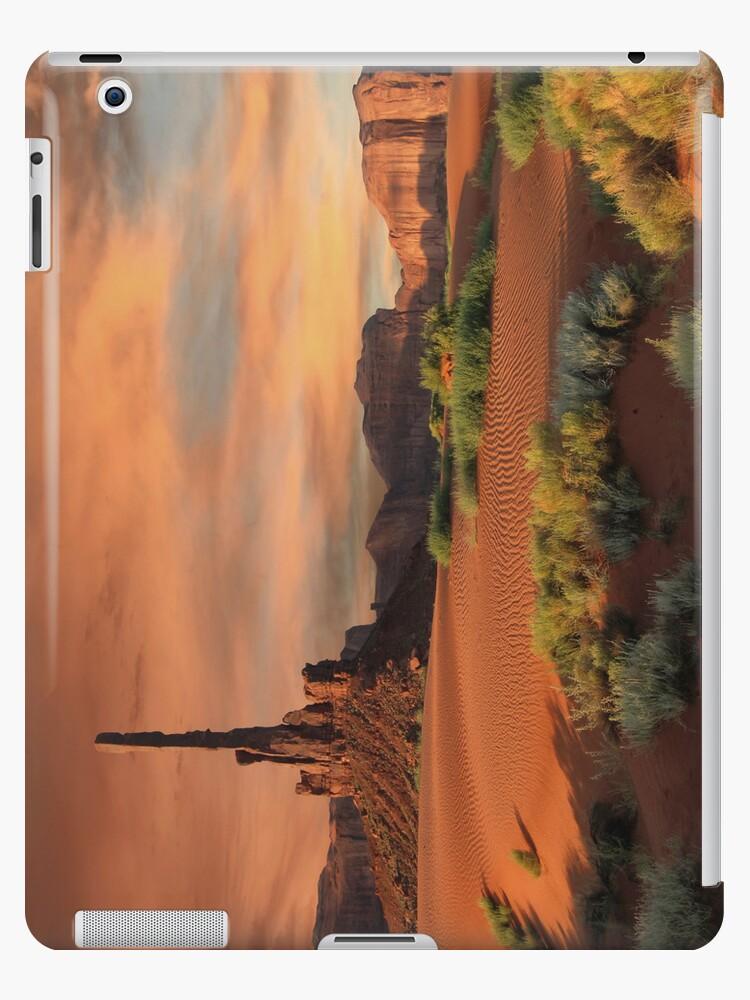 The Totem Pole iPad Case by Wojciech Dabrowski