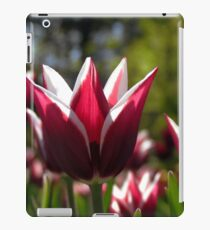 Tulips 7 iPad Case/Skin