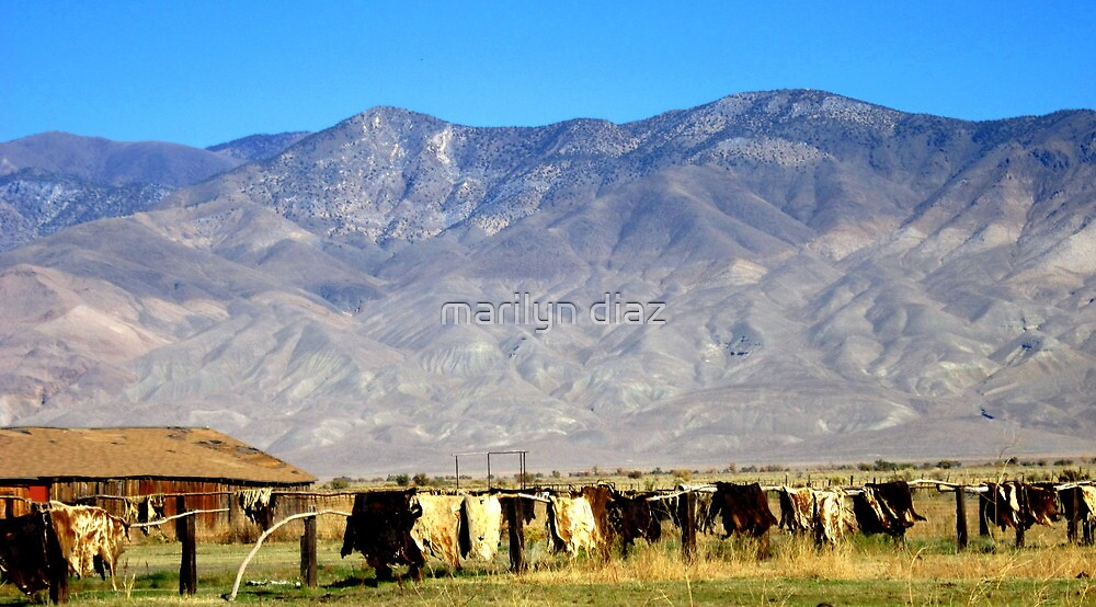 Ranch In The Sierras by marilyn diaz