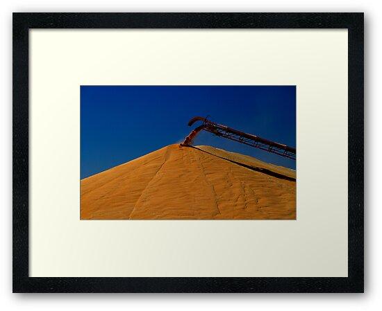 Grain Harvest by Noel Elliot