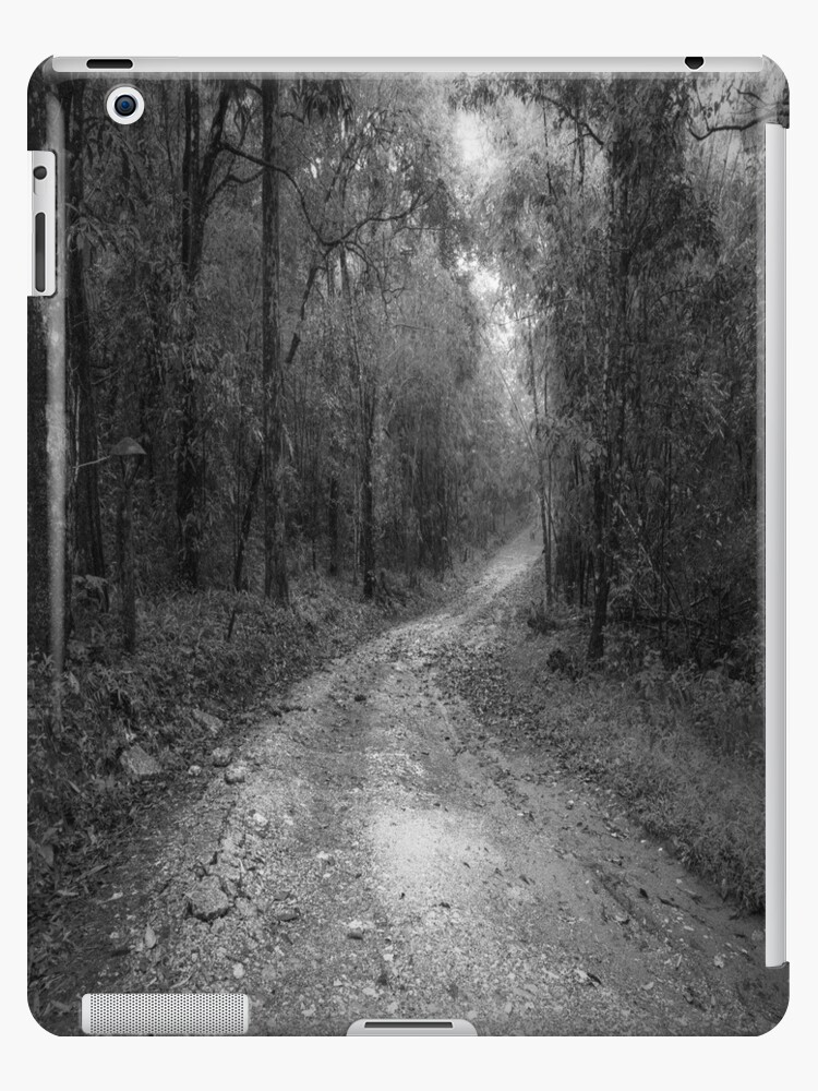 road way in deep forest by naphotos
