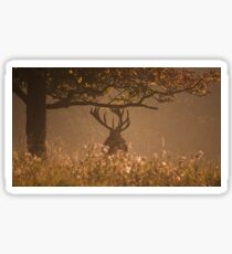 Red Stag at Woburn Sticker