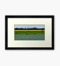 Alberta Fields Framed Print