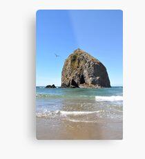 Canon Beach Haystack Metal Print