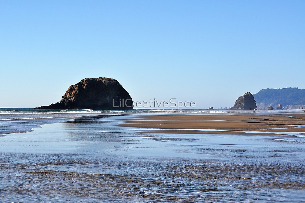 Low Tide by LilCreativeSpce