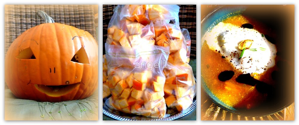 Pumpkin stages by ©The Creative  Minds