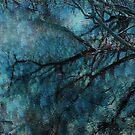 Reflection by Anne Staub