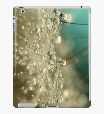 Smoky Blue iPad Case/Skin