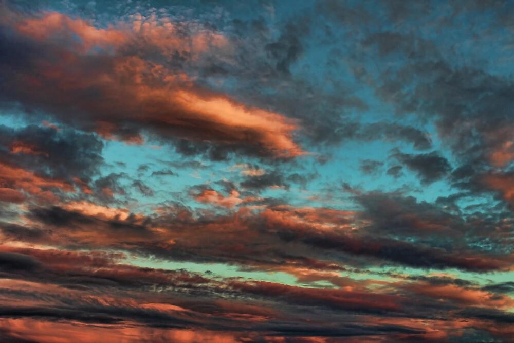 Cloud 20120830-144 by Carolyn  Fletcher