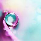 Honesty Blue Drop by Sharon Johnstone