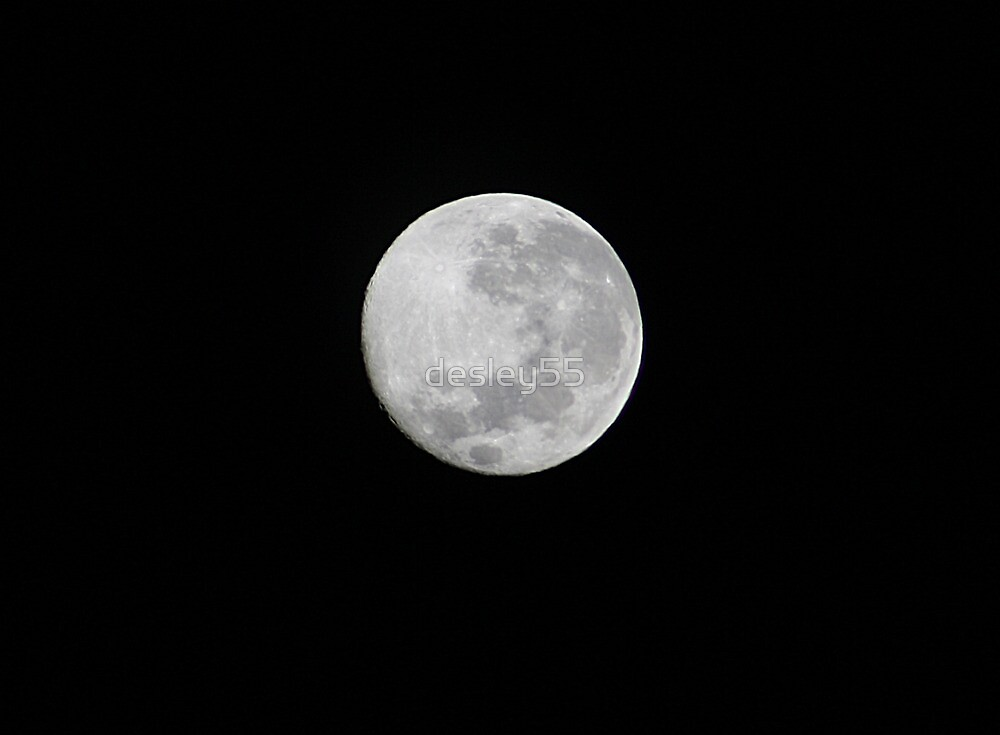 A Moon to Howl At by desley55