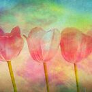"""Tulips 2 (from """"Painted flowers"""" collection) by EvaMarIza"""
