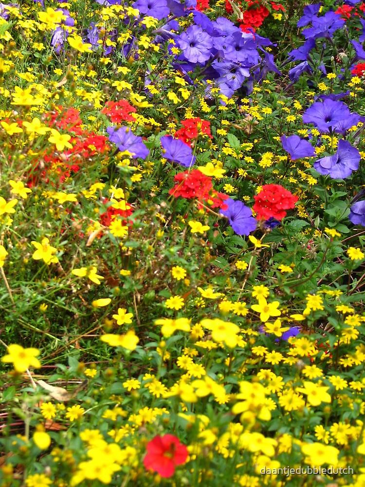 Flowers  by daantjedubbledutch