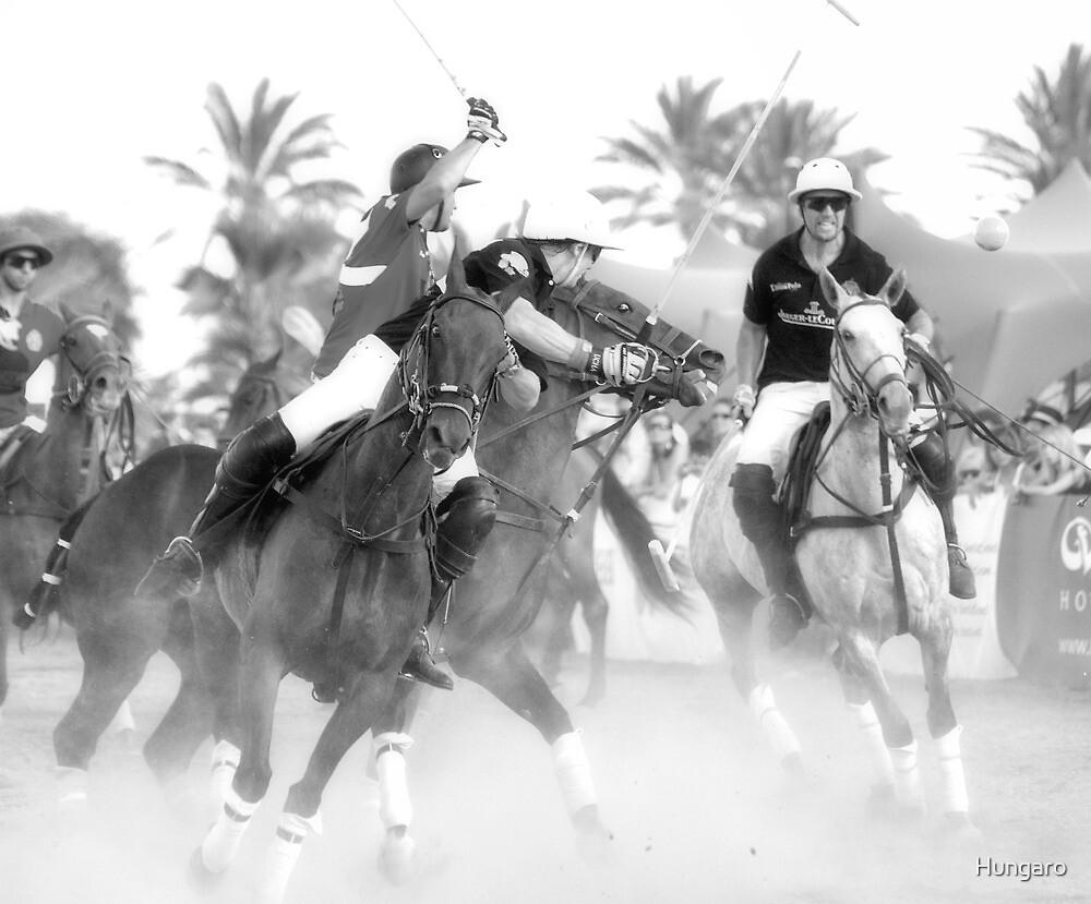 Beautiful IBIZA The Polo Game by Hungaro