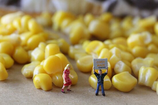 Be honest, Don…you've never really seen a corn maze, have you???? by Susan Littlefield