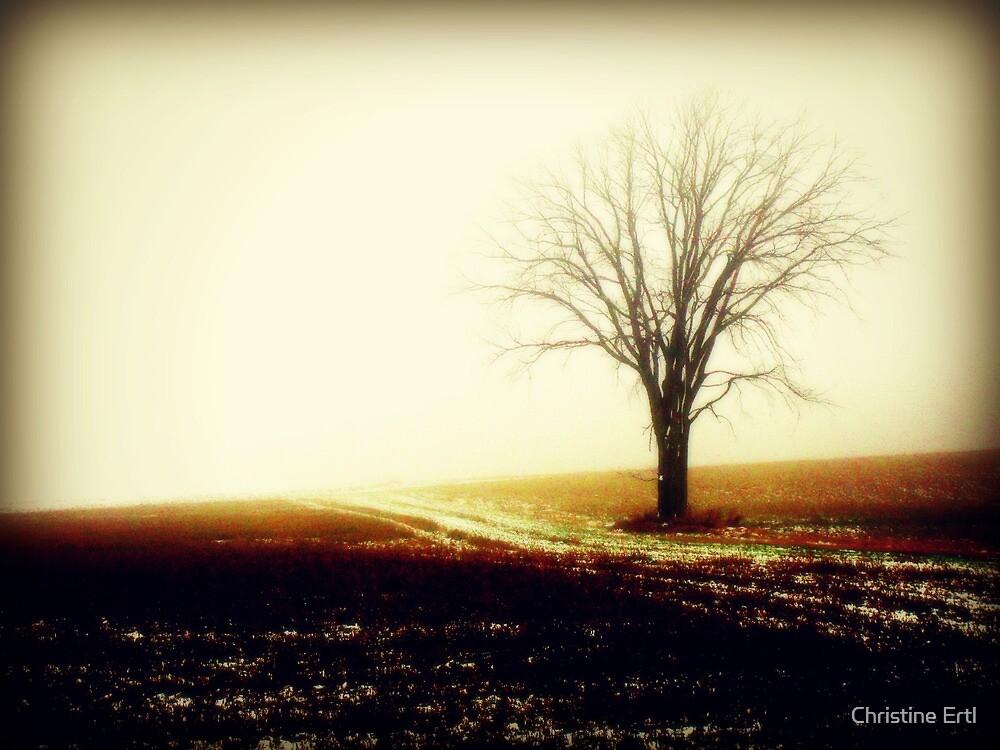 The Tree by Christine Ertl