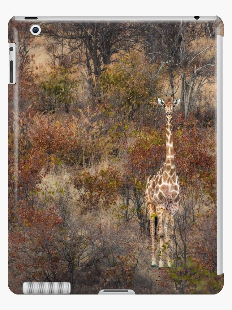 Can't tell the forest from the giraffe iCase by Owed To Nature