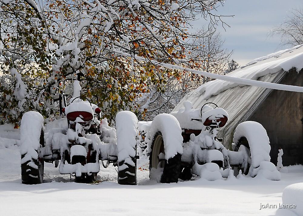 First Snow by joAnn lense