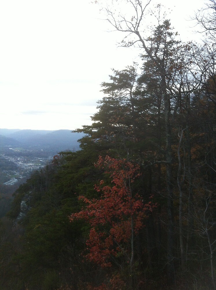 View From Pinnacle Overlook at Cumberland Gap 4 by travisferrell