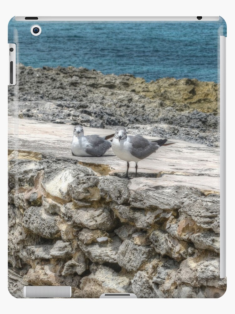 Seagulls | iPad Case by Jeremy Lavender Photography