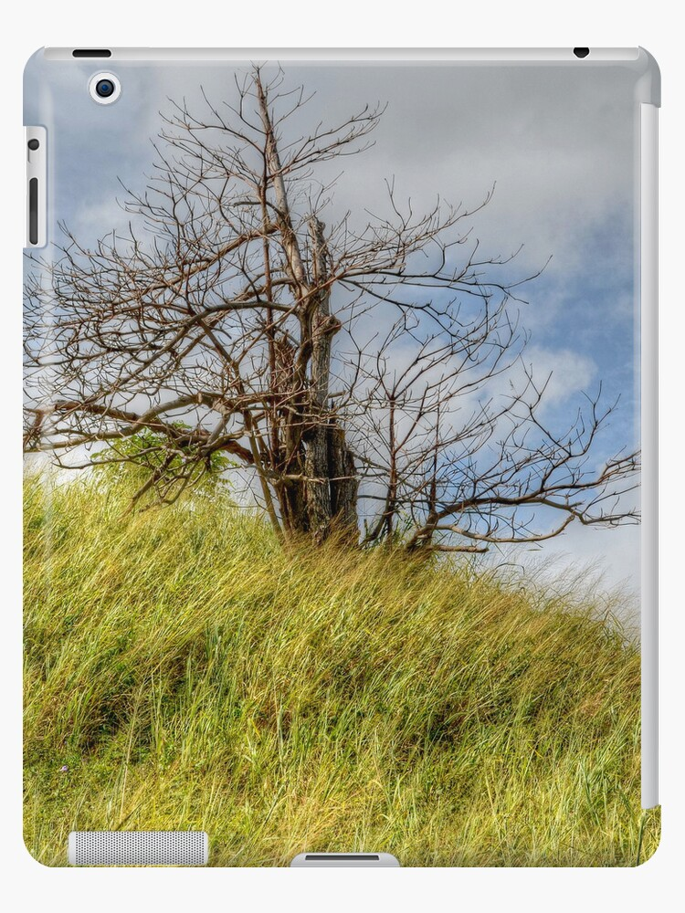 Lonely Tree | iPad Case by Jeremy Lavender Photography