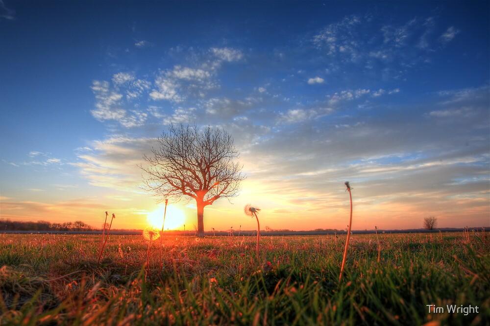 Kansas Turnpike by Tim Wright