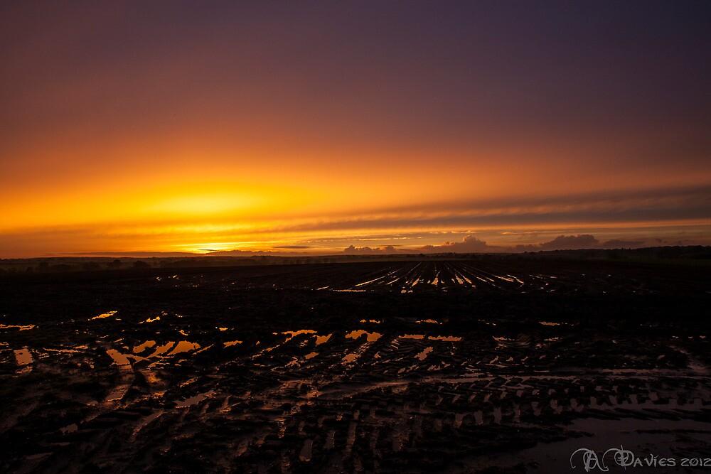 Sunset in the mud by Adam Davies