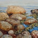 Stones and Sea by Roman Scott