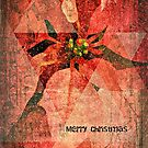 Merry Christmas (Pointsettias) by Scott Mitchell